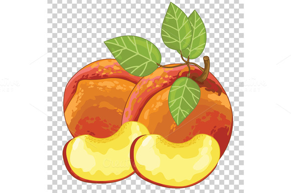 Peach Isolated Vector