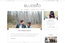 Bluebird - Wordpress blog theme