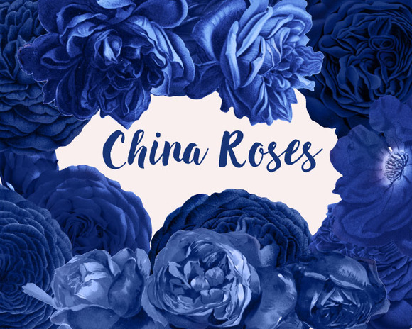 China Roses Vintage Watercolor Roses