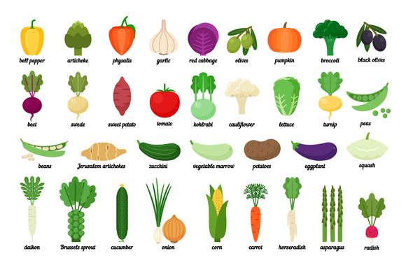 Collection Of Vegetable
