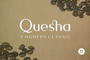 Quesha Intro Offer