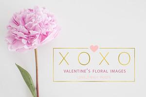 $5 SALE! Valentine's Floral Images