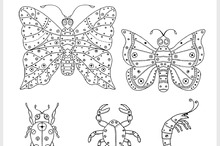 zentangle insects illustration.