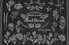 Vector Floral Elements Decorations