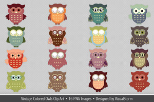 Cute Vintage Colored Owls Clipart