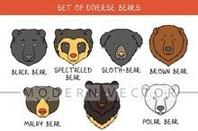 Set 9 muzzles bears handmade