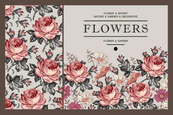 Set. Roses. Flowers. Card, frame. - Illustrations
