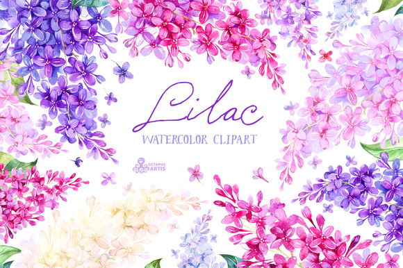 Lilac. Watercolor collection - Illustrations