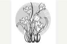 Vintage elegant flowers.