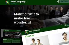 Responsive Single Page Web Site