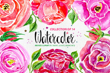 Watercolor flowers, 14 elements