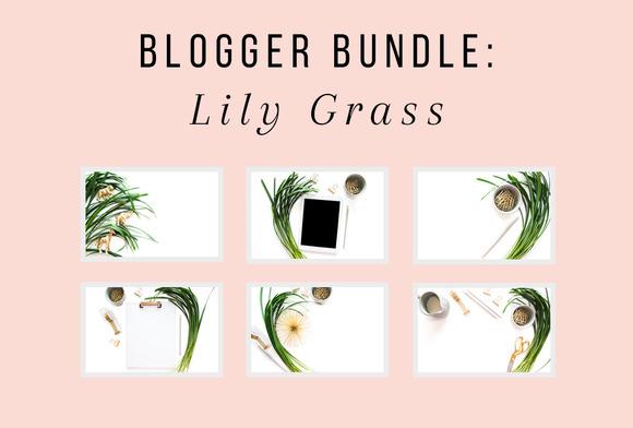 PLSP Lily Grass Blogger Bundle