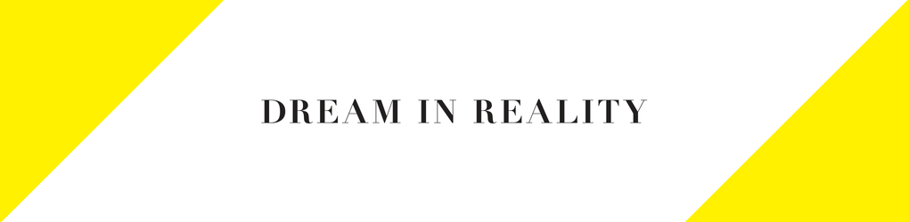 DREAM IN REALITY