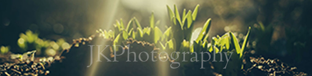 JKPhotography