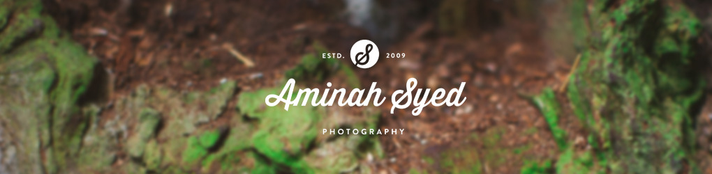 Aminah Syed Photography
