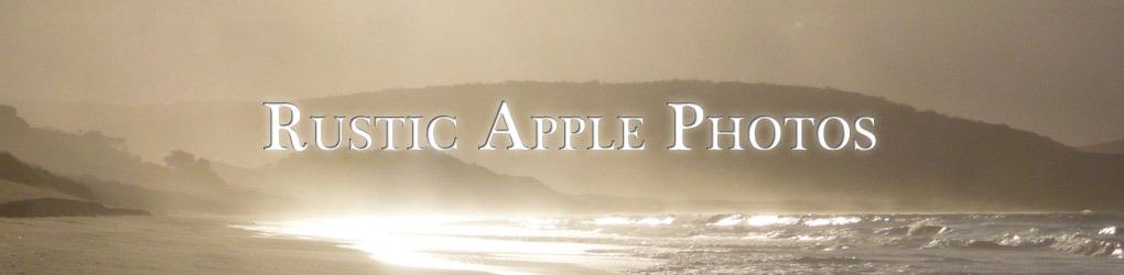 Rustic Apple Photos