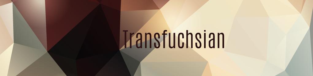 Transfuchsian
