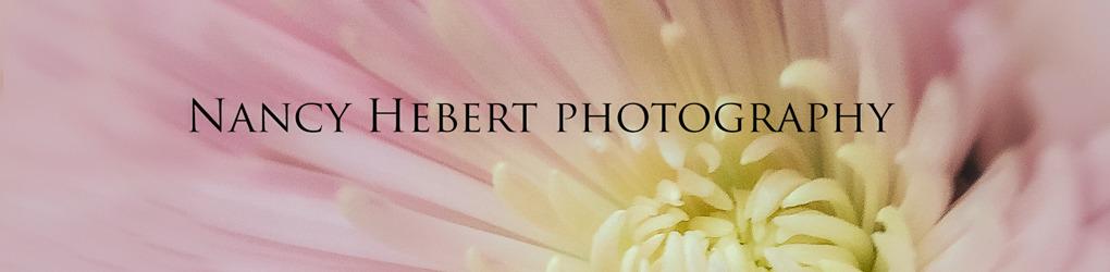 Nancy Hebert Photography