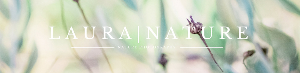Laura|Nature