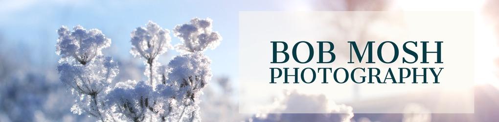 Bob Mosh Photo & More