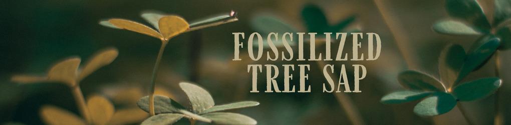 Fossilized Tree Sap