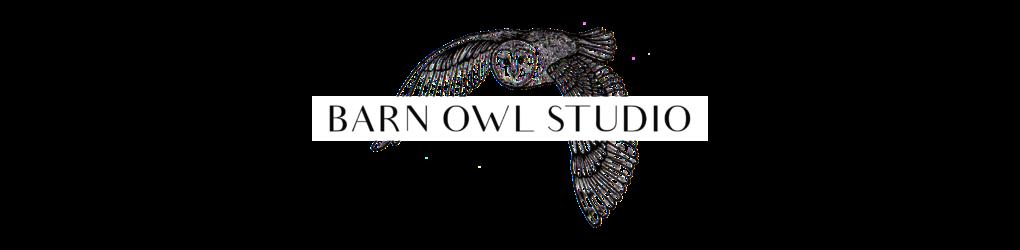 Barn Owl Studio