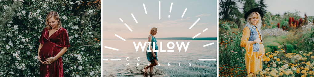 Willow Presets