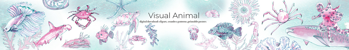 Visual Animal