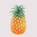 Pineapple Studio