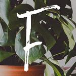 Flourish Design Co.