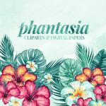 Phantasia Design