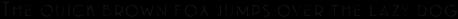 Emblema Fill 3 Basic