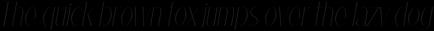 Thin-Italic