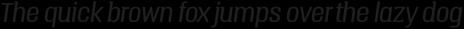 Triump Light Italic