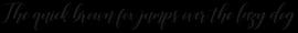 Desyanti Script Regular