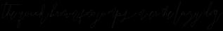 SignatureScript1Alternative