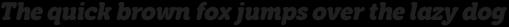 Eacologica Round Slab Bold Italic