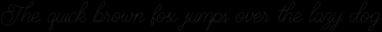 Brayden Script