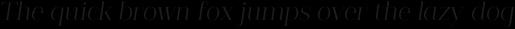 Guadalupe Essential Italic