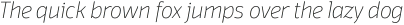 Domotika Thin Italic