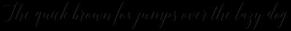 Adelicia Script Slant