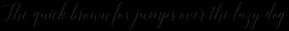 Adelicia Script Slant Rough