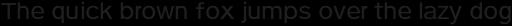 Pulse Regular Italic