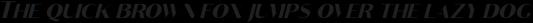 Croco Thin Italic