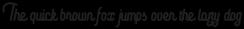Aviator Script