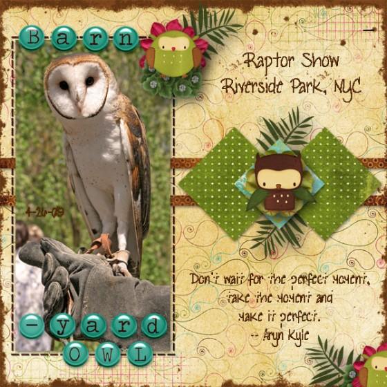Barnyard-Owl-v2-Quote-4-Web