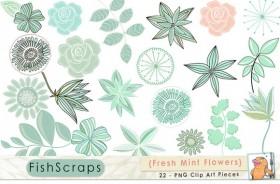 fresh-mint-flowers-f