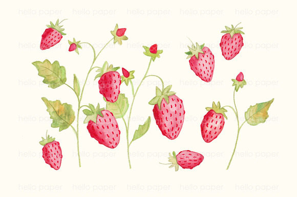 strawberries by helloPAPER