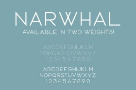 narwhal_cmpromo-f