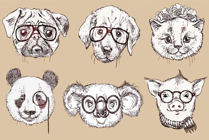 Hipster Animal Drawings Tumblr